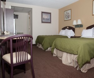 White Gables Motel - Two Double Bed Room - White Gables Motel